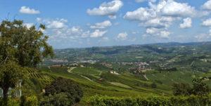 Nocciole Coralba tra Langhe e Monferrato