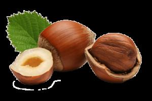 Logo Nocciole Coralba
